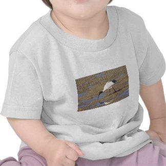 Sacred Ibis T-shirts