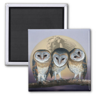 Sacred Owl North American Indian Magnet