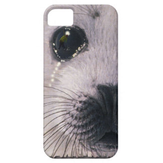 Sad Baby Harp Seal Fantasy Art Wildlife Phone Case iPhone 5 Cases