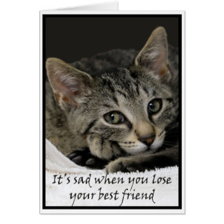 Sad cat offers condolences on the loss of a pet card