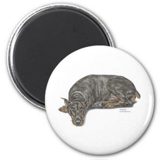 Sad Guilty Looking Doberman 6 Cm Round Magnet