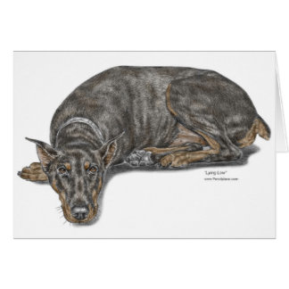 Sad Guilty Looking Doberman Card