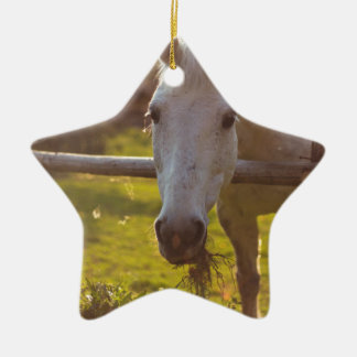 Sad Horse Christmas Ornament