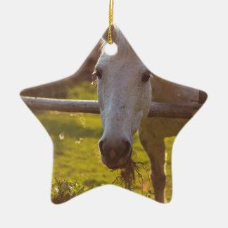 Sad Horse Christmas Ornament