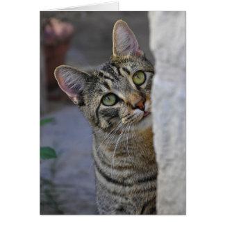 Sad Kitty (bengal cat) Card