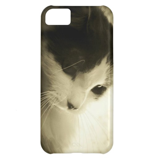 Sad Kitty Case For iPhone 5C