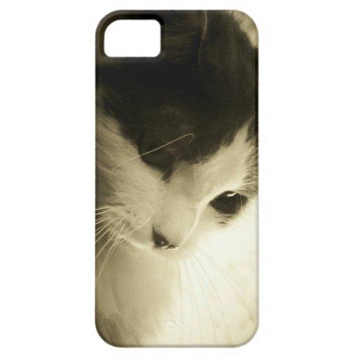 Sad Kitty iPhone 5/5S Covers