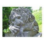 Sad Lion Postcard