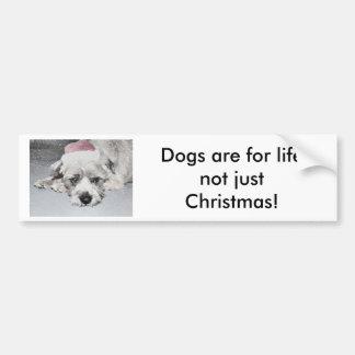 Sad little christmas dog bumper stickers