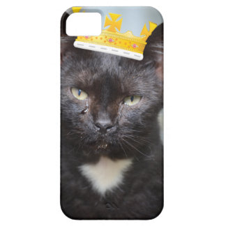 sad little Prince Kittie iPhone 5 Cover