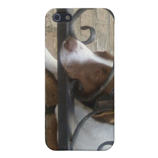 Sad & Lonely Dog-i- Case For iPhone 5/5S