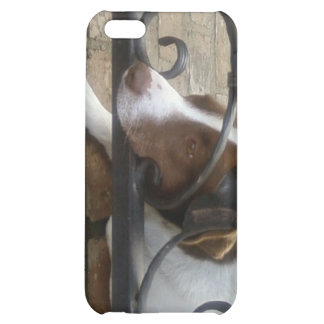Sad & Lonely Dog-i- Case For iPhone 5C