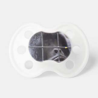 sad monkey in cage primate image baby pacifier