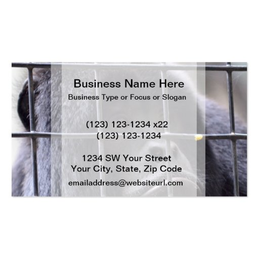 sad monkey in cage primate image business card template