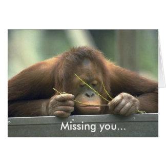 Sad Orangutan Missing You Note Card