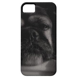 Sad Pug iPhone 5 Cases