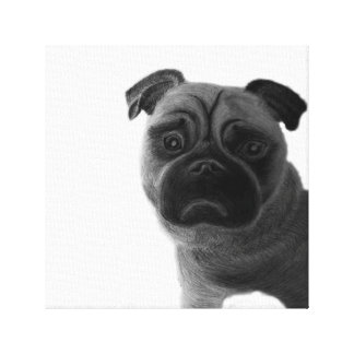 Sad pug graphic illustration canvas print
