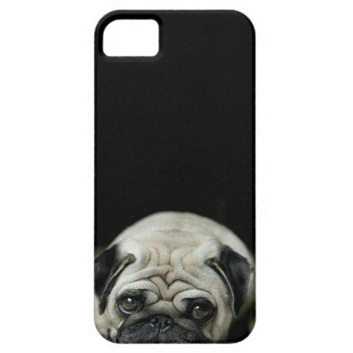 sad pug iphone 5 case