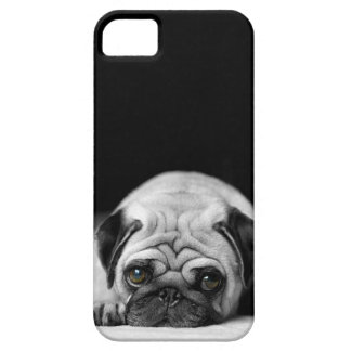 Sad Pug iPhone 5 Cases