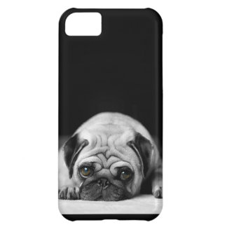 Sad Pug iPhone 5C Case