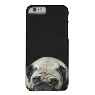 sad pug iPhone 6 case