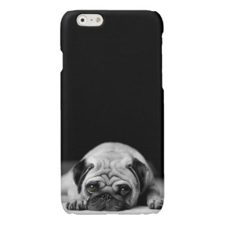 Sad Pug iPhone 6 Plus Case