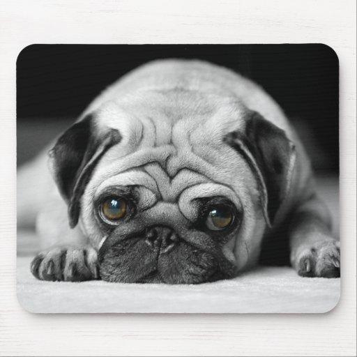 Sad Pug Mousepad