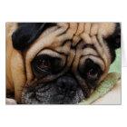 Sad Puggy Note Card