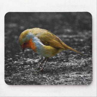 sad robin mouse mats