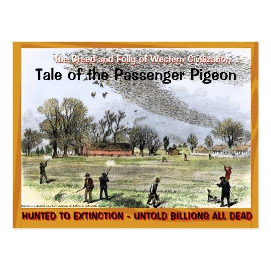 Sad Sad Tale of the Passenger Pigeon --~ Postcard
