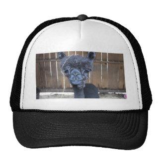 Sad Shaved Alpaca Trucker Hats