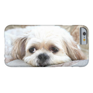 Sad Shih Tzu face Barely There iPhone 6 Case