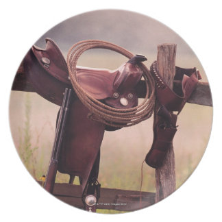 Saddle and Lasso on Fence Plate
