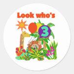 Safari 3rd Birthday  Tshirts and Gifts Round Sticker