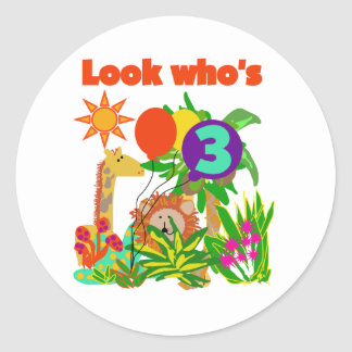 Safari 3rd Birthday  Tshirts and Gifts Round Sticker