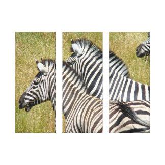 Safari canvas art prints Wildlife Zebras Gallery Wrapped Canvas