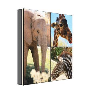 Safari Canvas Collage Stretched Canvas Print