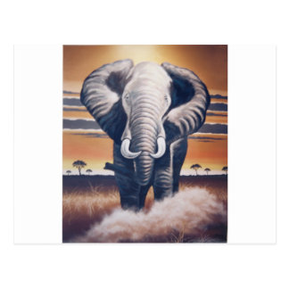 Safari Elephant Postcard