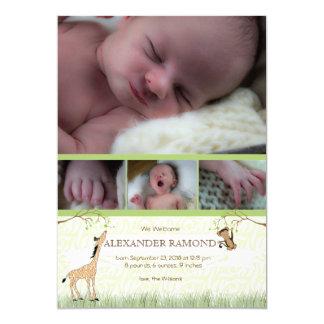Safari Monkey Baby boy birth Annoucement 13 Cm X 18 Cm Invitation Card