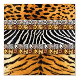 Safari Prints Photographic Print