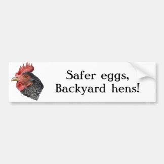 Safer eggs, Backyard hens! - Bumper sticker