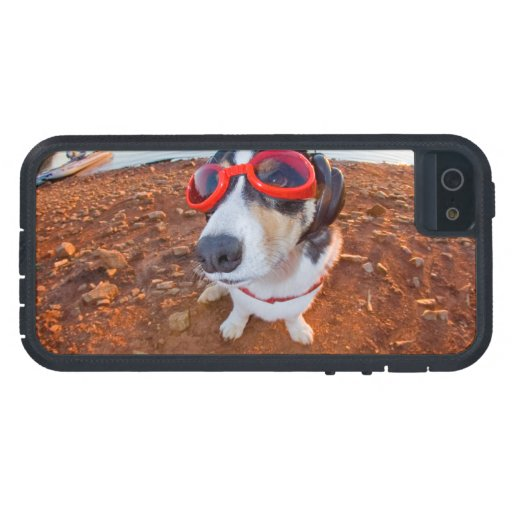 Safety Dog iPhone 5 Cases