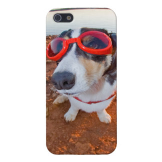Safety Dog iPhone 5/5S Cases