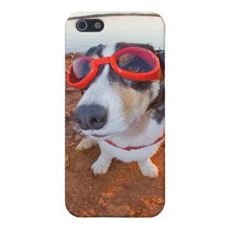 Safety Dog iPhone 5 Case
