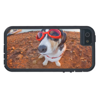 Safety Dog iPhone 5 Cover
