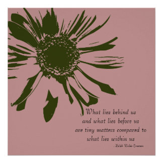 Sage Green and Pink Inspirational Floral Posters