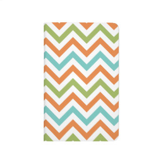 Sage Green, Orange, and Robins Egg Blue Chevron Journal