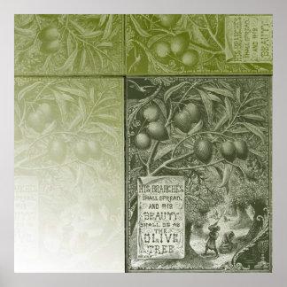 Sage Olive Tree Poster