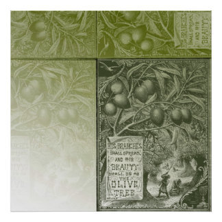 Sage Olive Tree Posters