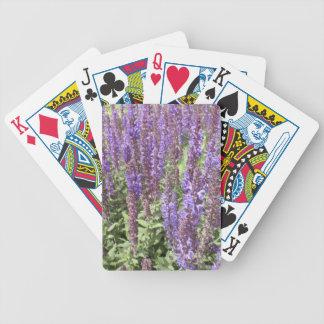 Sage Salvia Nemorosa Ostfriesland Bicycle Card Decks